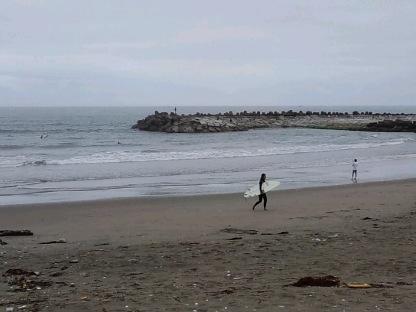 surfin01.jpg
