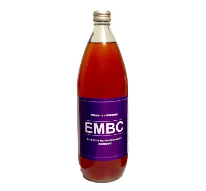 embc-2.jpg