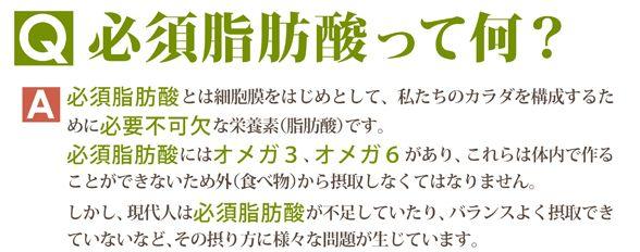 ewrj2013_000402.jpg