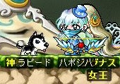 Maple140213_213436.jpg