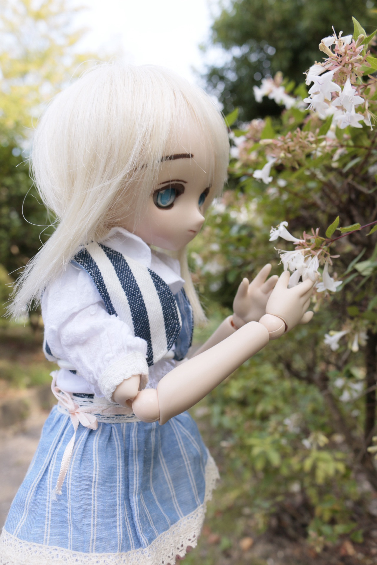 ちっちゃいお花