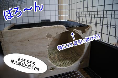 DSC08070_201309181720115a0.jpg