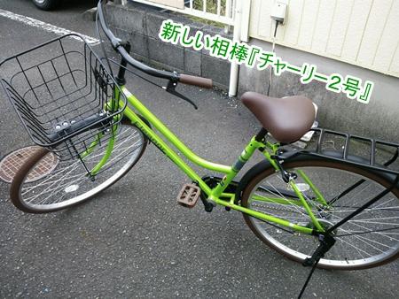 DSC_0111_201310211746250cf.jpg
