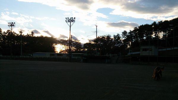 20131113-04