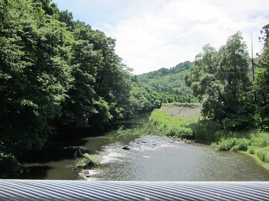 吊り橋からの新井田川