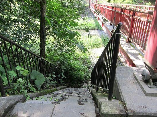 新井田川に下りられる階段