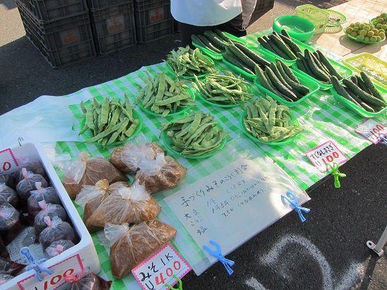 8月の野菜 ささぎ