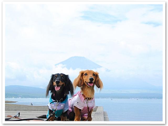 山中湖旅行 PartⅠ