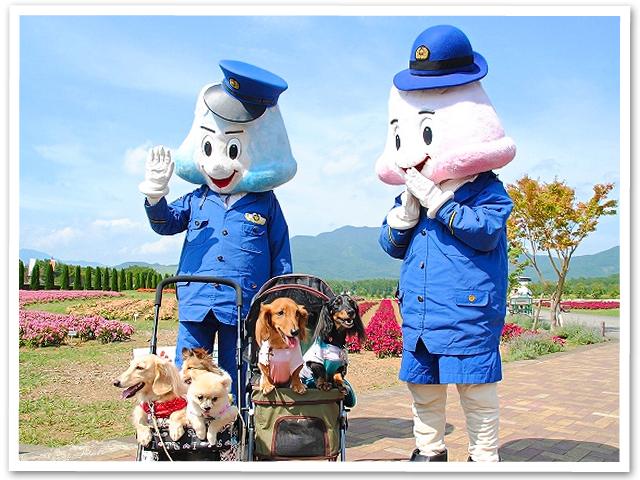 山中湖旅行 PartⅡ