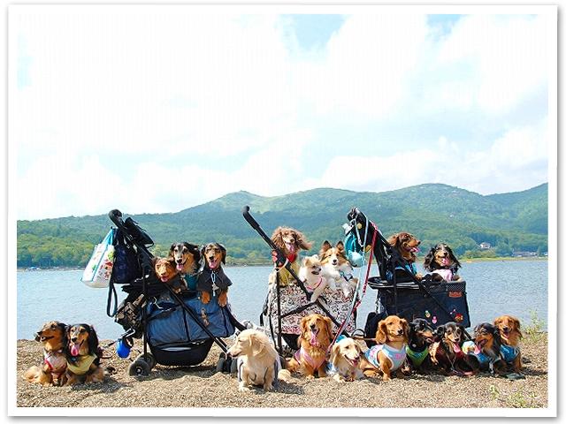 山中湖旅行 PartⅢ