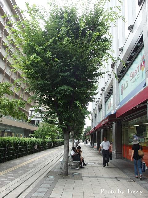 大阪駅裏側のヨドバシ前