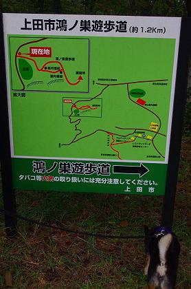 散歩道地図