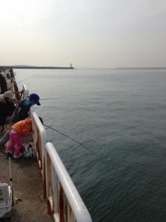 南港釣り公園2