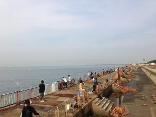 南港釣り公園4
