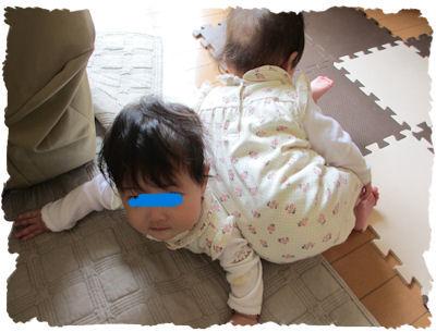 IMG_6583.jpg