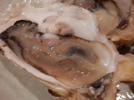 牡蠣とん (29)