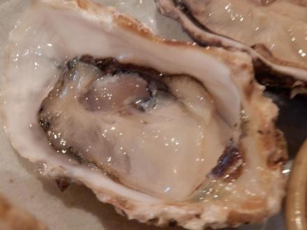 牡蠣とん (30)