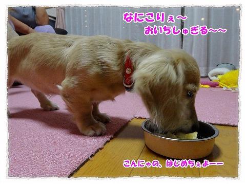 2014_10_13_3.jpg