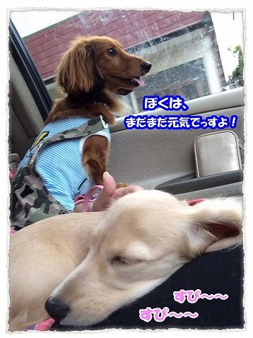 2014_10_3_3.jpg