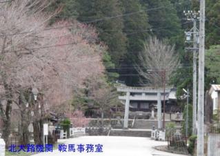 cIMG_0588.jpg