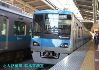 dsIMG_7971.jpg