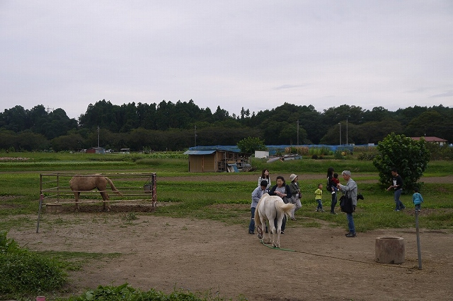 P1130521.jpg
