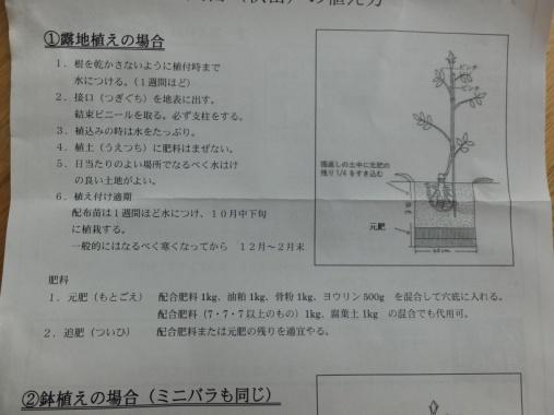 DSCF6995+1.jpg