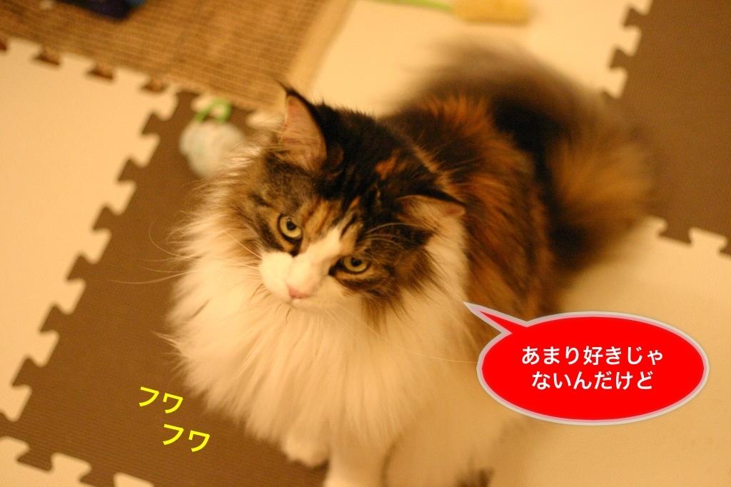 image_20130422192810.jpg