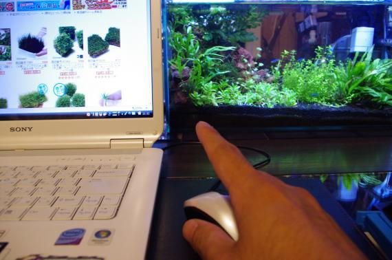 010_convert_20130805215427.jpg