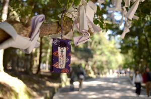京都1−5_convert_20130328184706