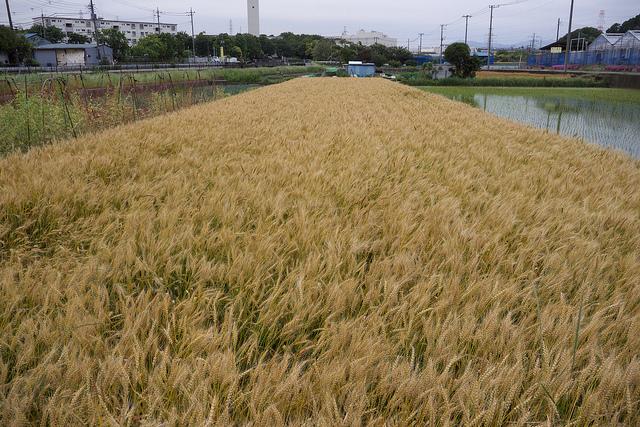 ④201306町田