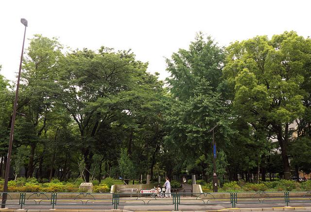 ⑥新宿明治通り 小