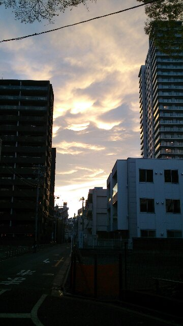 DSC_0617-1.jpg