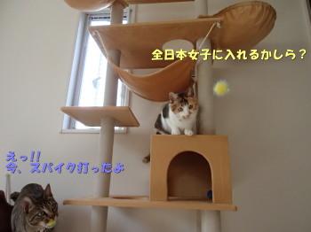 20130523_212.jpg