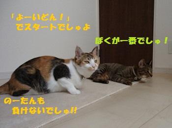20130523_44.jpg