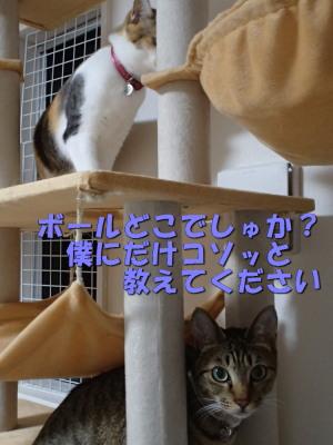 20130530_153.jpg