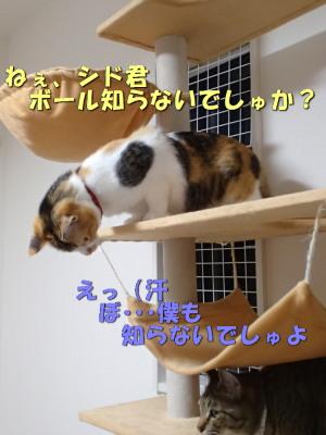 20130530_156.jpg