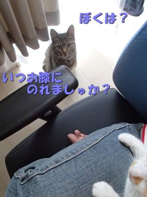 20130602_23.jpg