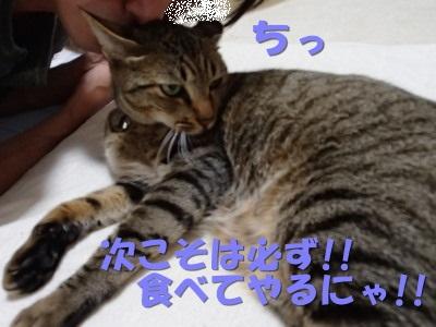 20130612_31.jpg