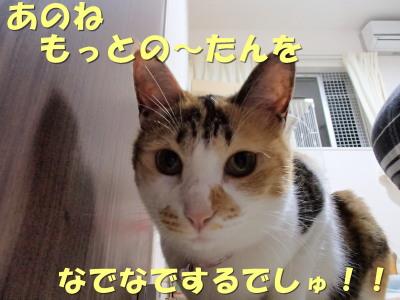 20130626_13.jpg