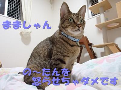 20130626_16.jpg
