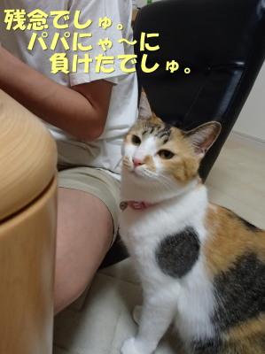 20130709_37.jpg