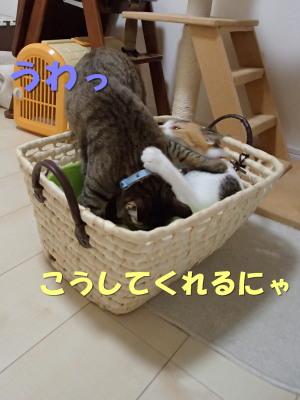 20130715_167.jpg