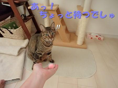 20130817_170.jpg