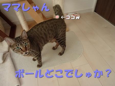 20130817_188.jpg