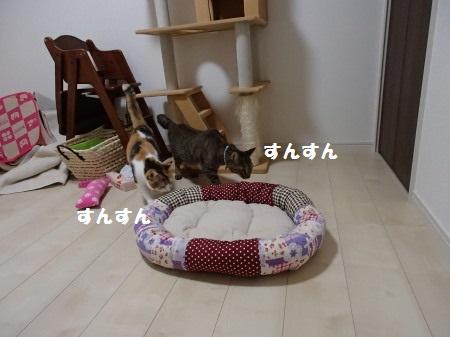 20130901_37.jpg
