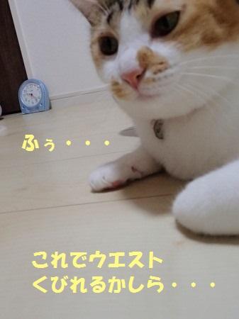 20130904_274.jpg