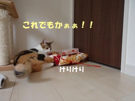 20130915_144.jpg