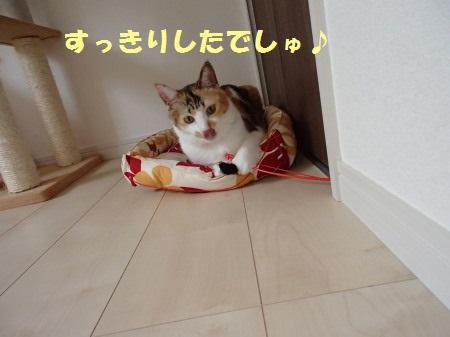 20130915_180.jpg