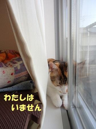20130919_02.jpg
